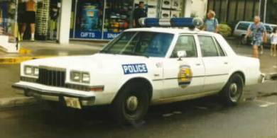 Dodge Intrepid Police